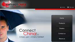 Connect china LTD